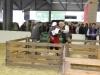journee-agneau-de-pauillac-bordeaux-2015-100