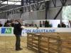 journee-agneau-de-pauillac-bordeaux-2015-114