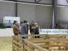 journee-agneau-de-pauillac-bordeaux-2015-158