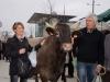 « Missou » et les Eleveurs Girondins arrivent à Mérignac - janvier 2012