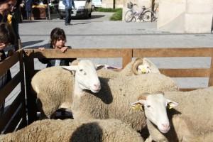 Les Eleveurs Girondins fêtent Pâques à Mérignac