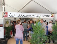 Foire Bordeaux